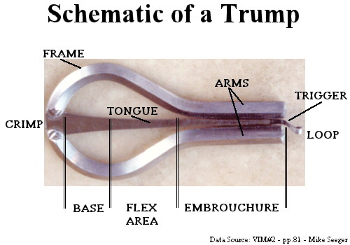 Schematic of a Trump